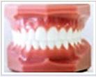 teeth04